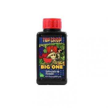 Big One Top Crop 100ml