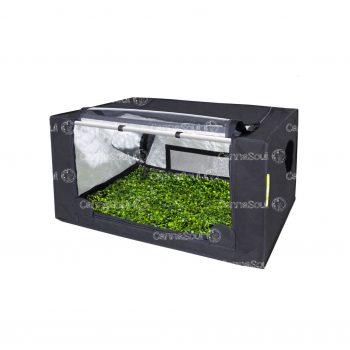 Carpa Indoor Garden Probox Propagator M 80x60x40 Esquejes